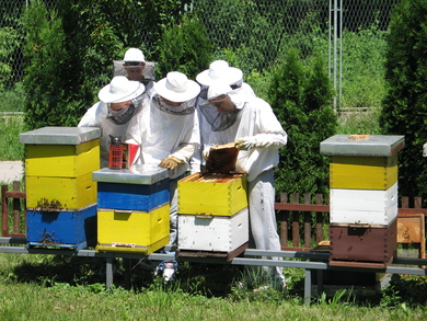 /uploads/attachment/strana/127/15.jpg.JPG