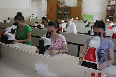 /uploads/attachment/strana/127/24.jpg.JPG